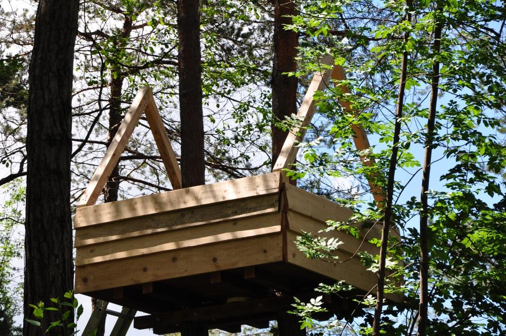 Interessante costruire casetta sull albero xa85 pineglen - Casa sull albero da costruire ...