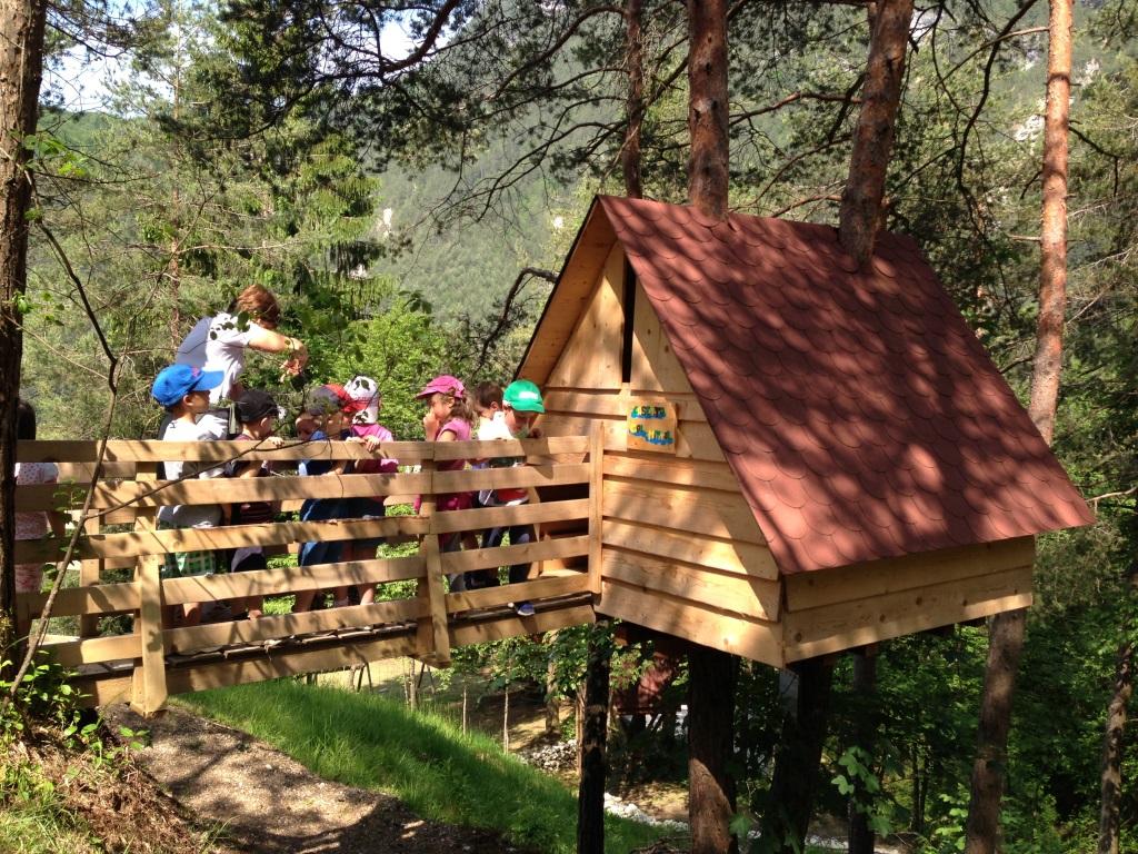 Noleggia la tua casa sull 39 albero per 1 2 3 notti for Kit per costruire casa sull albero