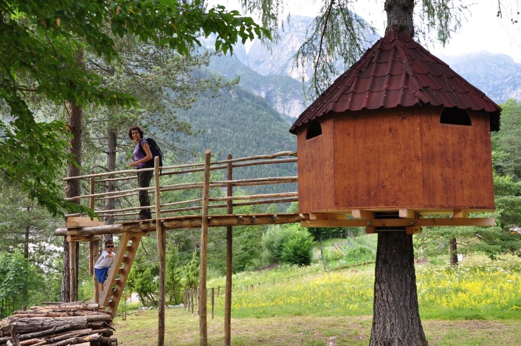 Noleggia la tua casa sull 39 albero per 1 2 3 notti for Casa per costruire la tua casa